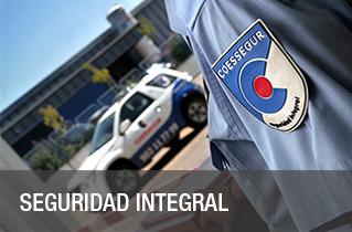 Seguridad integral vigilancia